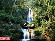 Parque Nacional Pu Mat en provincia centro vietnamita de Nghe An