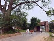 Casa de piedra de laterita más antigua en flamante aldea de Duong Lam