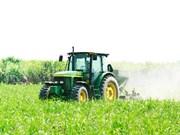 TTCS: principal productor de azúcar refinado