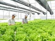 Delco Farm: Un modelo de cultivo inteligente