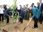 Lanzan campaña de plantación de árboles en provincia vietnamita de Hoa Binh