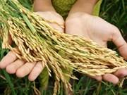 Reforzará Singapur la seguridad alimentaria