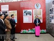 Exposición artística celebra llegada de la primavera y fundación del Partido Comunista de Vietnam