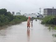 Vietnam promueve prevención contra desastres naturales
