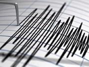 Despierta región oriental de Indonesia con terremoto