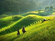 """Publica el Banco Mundial su """"Informe de la valoración del turismo de Vietnam"""""""