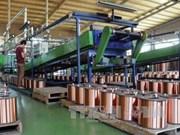 Se redujo en febrero índice de Producción Industrial de Vietnam