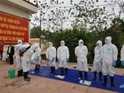 Realizan en Vietnam simulacro de prevención contra epidemia de fiebre porcina