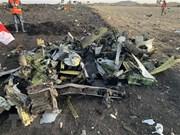 Ofrece Indonesia asistencia para  investigación sobre accidente aéreo en Etiopía