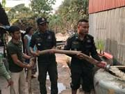 Ayuda Tailandia a Camboya ante fuerte sequía