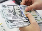 Invierten empresas vietnamitas más de seis millones de dólares en el extranjero