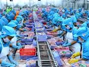 Vietnam, cuarto exportador mundial de productos acuáticos
