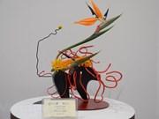 Vietnam participa por primera vez en exposición de ikebana, arte japonés de arreglo floral
