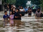 Indonesia: Más de 40 muertos por inundaciones