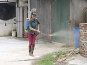 Asiste la FAO a Vietnam en lucha contra epidemia de fiebre porcina africana
