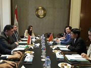 Considera Egipto a Vietnam un socio importante en su política hacia Asia
