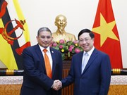 Trazan Vietnam y Brunéi medidas para robustecer relaciones bilaterales