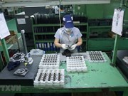 Mantienen inversiones extranjeras directas en Vietnam  su curva ascendente