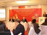Busca ciudad vietnamita de Da Nang atraer más inversiones de Canadá