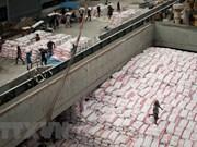Tailandia reduce exportación de arroz