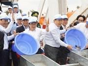 Realiza Vietnam esfuerzos para reproducir especies acuáticas en golfo de Tonkín