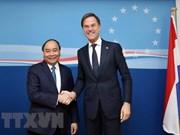 Planean Vietnam y Países Bajos establecer asociación integral