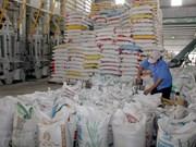 Registra Vietnam reducción de ingresos por exportaciones de arroz