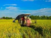 Inauguran mayor feria comercial de Vietnam