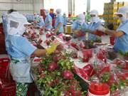 Europa, mercado potencial de productos agrícolas vietnamitas