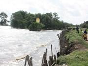 Aplican provincias en Delta del Mekong medidas contra el cambio climático