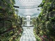 Singapur pone en operación oficial nuevas instalaciones en el Aeropuerto de Changi