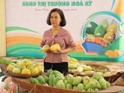 Exporta Vietnam primer lote de mangos a Estados Unidos