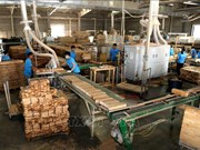 Considera Vietnam medidas antidumping en importaciones madereras de Tailandia y Malasia