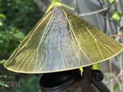Festival de Oficios Tradicionales de Hue atrae a artesanos extranjeros