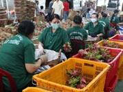 Disminuyen exportaciones agropecuarias vietnamitas en primer cuatrimestre de 2019