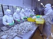 Beneficia Acuerdo Transpacífico exportaciones de camarones de Vietnam a Canadá