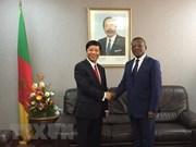 Proyecta  Vietnam ampliar sus relaciones con la República de Camerún