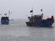 Pide Vietnam a Indonesia a respetar leyes internacionales sobre la pesca en el mar