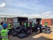 Incauta aduana vietnamita más de cinco toneladas de escamas de pangolín