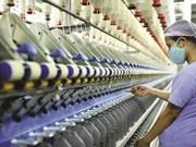 Registra Vietnam aumento récord de nuevas empresas en cinco años