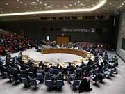 Apoya embajador indonesio elección de Vietnam como miembro del Consejo de Seguridad de la ONU
