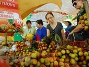 Anuncian Festival de Frutas del Sur de Vietnam durante junio y agosto de 2019