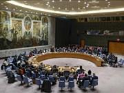 Expresa periodista egipcio confianza en elección de Vietnam al Consejo de Seguridad de la ONU