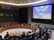 Vietnam elegido miembro no permanente del Consejo de Seguridad de ONU