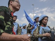 Ratifica ONU respaldo a Vietnam, miembro no permanente del Consejo de Seguridad