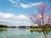 Da Lat fue admitida como miembro de la Organización para la Promoción del Turismo Asia-Pacífico