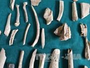 Descubren en provincia vietnamita de Bac Kan huellas de humanos prehistóricos