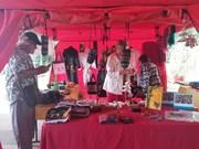 Vietnam centra la atención durante festival en Francia