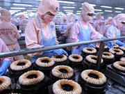 Destaca Banco Mundial beneficios que brinda a Vietnam el TLC con la UE