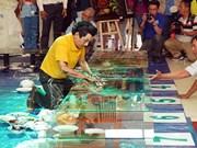Establece pintor vietnamita récord mundial de pinturas en reversa